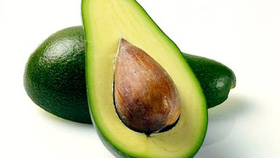 Aguacate