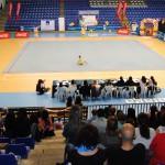 013 - XII Torneo Gimnasia Rítmica Ciudad de Málaga