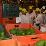066 - Visita Consejera Agricultura Junta Andalucía Trops