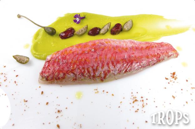 trops-salmonete-logo-blanco